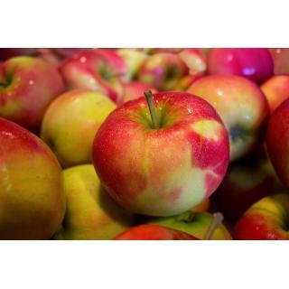 Äpfel, Jonagold