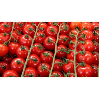 Tomaten, Cherry