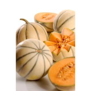 Charentais-Melone, kg